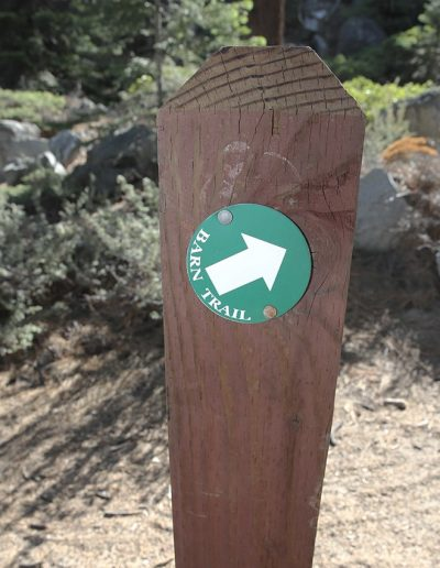 Green barn trail sign with arrow pointing right